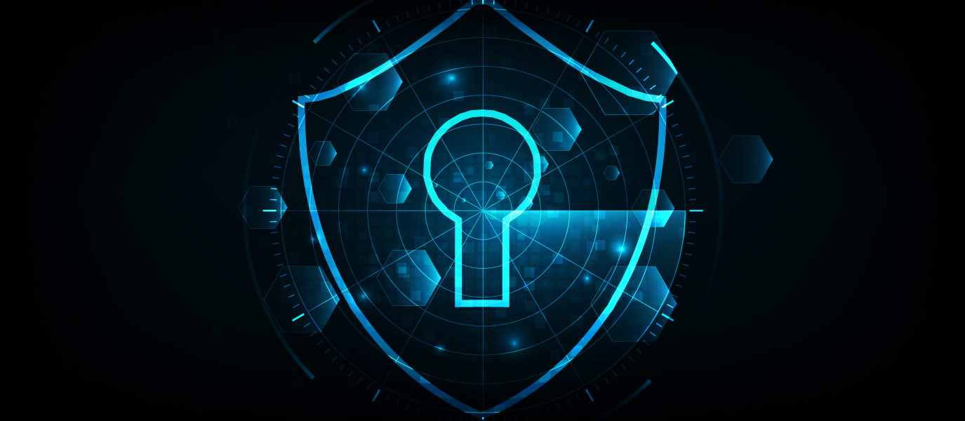 Data Security Features